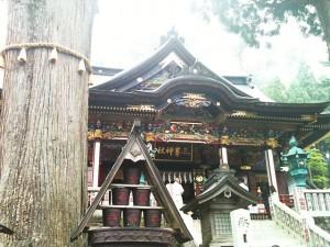ご神木と拝殿