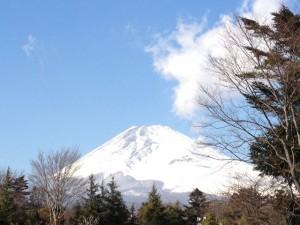 富士山もすっきり綺麗に見えた!