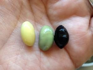 丸大豆、だるま大豆、黒豆
